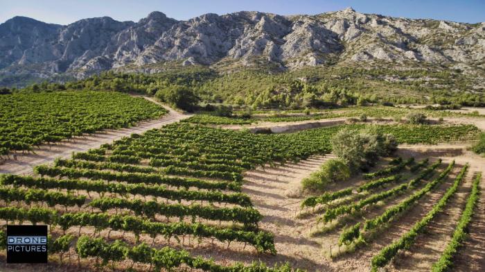 Vue aérienne des Vignes au pied de la Montagne Sainte-Victoire © Drone-Pictures