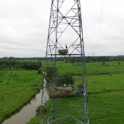 UAV shooting of a Stork's Nest on an electric pylon, Loire, France