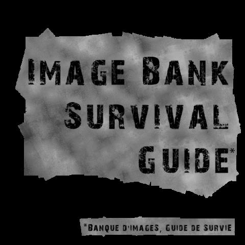 Nouveau : l'indispensable Guide de Survie en banque d'images est sorti!